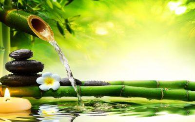 Relaxáció-Koncentráció-Meditáció Tanfolyam