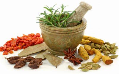 Ajurvédikus konyhapatika  – előadás és bemutató