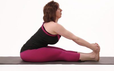 Iyengar Jóga tanfolyam – Fókuszban a hát és a gerinc