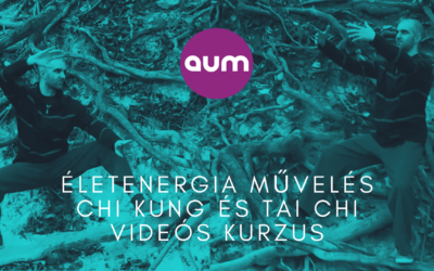 Életenergia művelés chi kung és tai chi videós kurzus