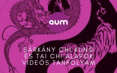 Sárkány chi kung és tai chi alapok videós tanfolyam
