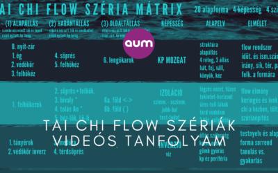 Tai chi flow szériák videós tanfolyam